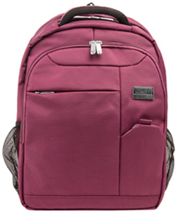 "Germini Laptop Backpack 15"" (Purple)"